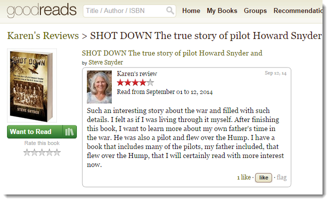 "Goodreads | Karen reviews ""Shot Down"""